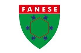 FANESE 278×181