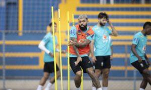 Read more about the article Copa América: seleção chega ao Rio de Janeiro para jogo contra Peru