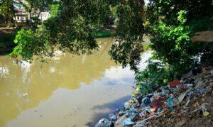 Read more about the article Dia Mundial da Limpeza tenta recuperar rios